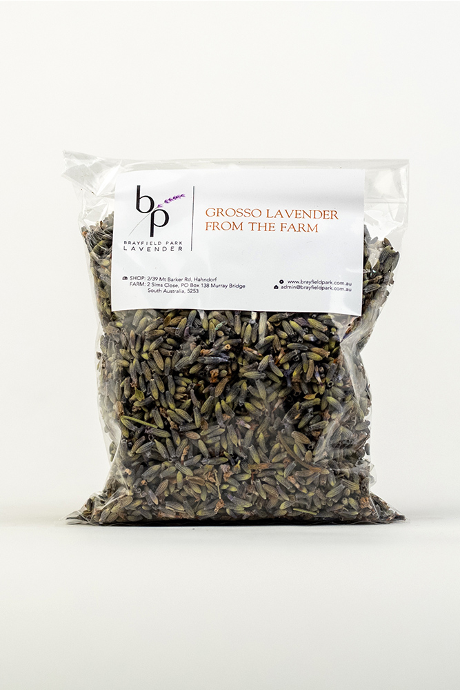 Dried-Grosso-Lavender-Front