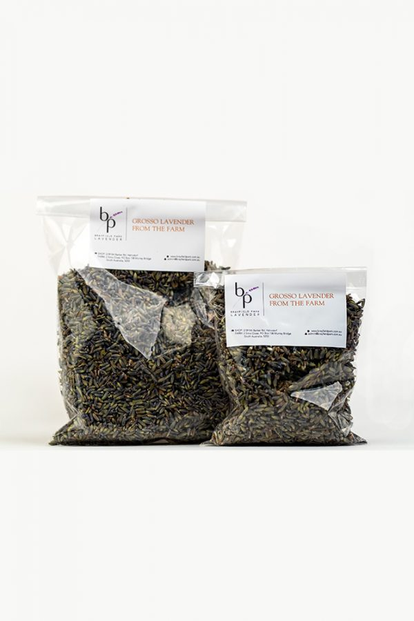 Dried-Grosso-Lavender-Two
