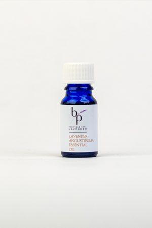 Angustirolia-Essential-Oil